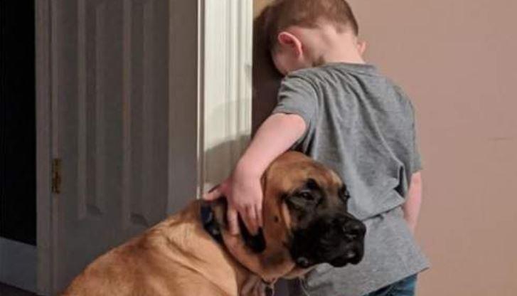 Mãe Dá Castigo Para Filho E Cachorro Acompanha Na