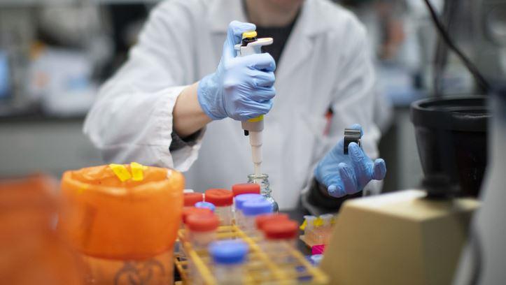 Pesquisadores Descobriram Que Medicamento Para Acabar Com Piolhos Pode Matar O Coronavírus